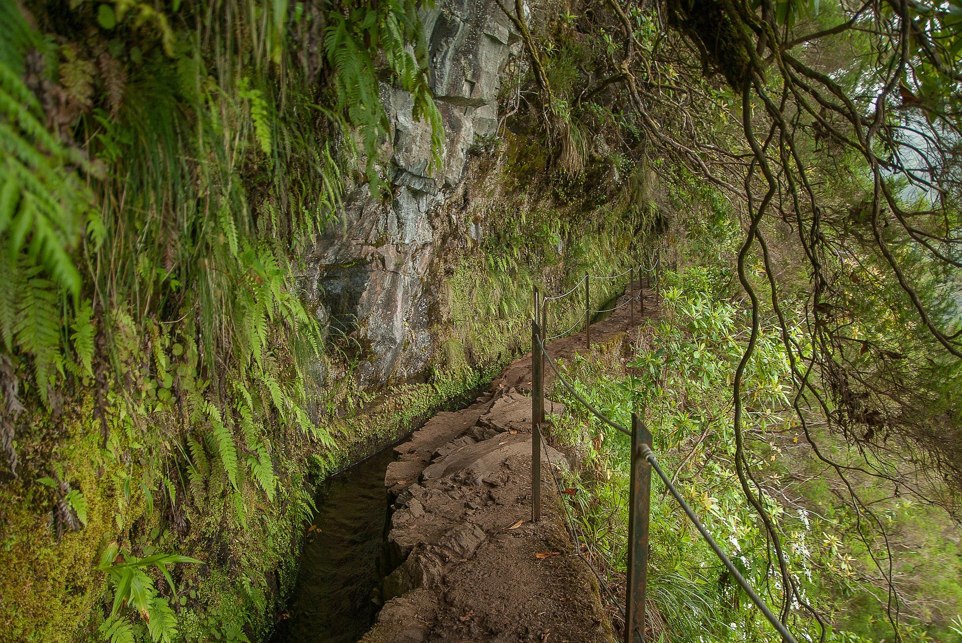 levada en Madeira