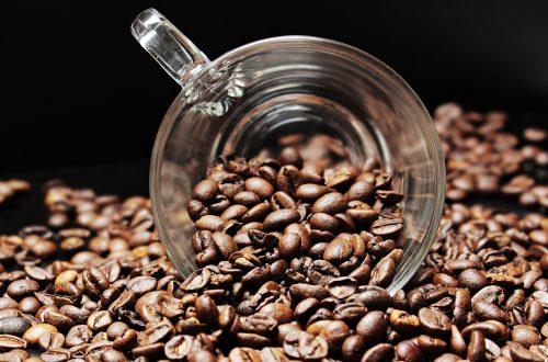 Todo lo que deberías saber sobre el cafe