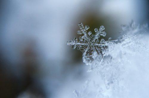Cuidados en invierno